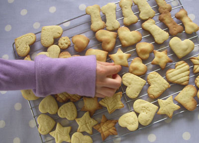 Biscuits-finished