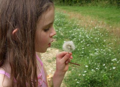 Gracie-dandelion