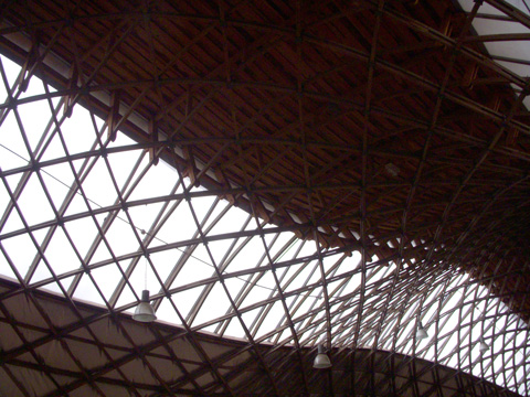 Ceiling,-Downland-Gridshell