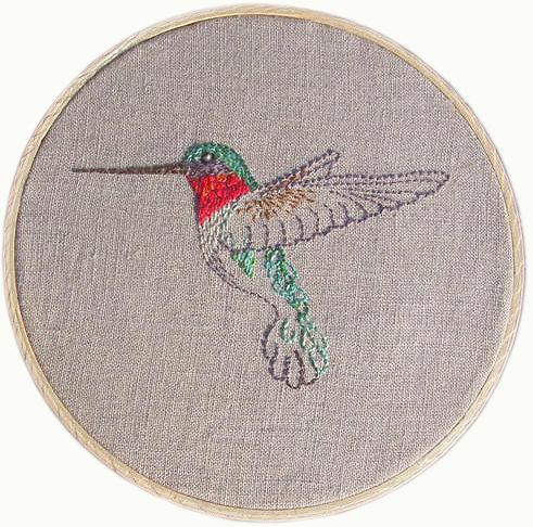 Hummingbird-gifted