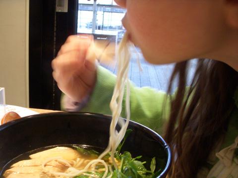 Noodle-crazy