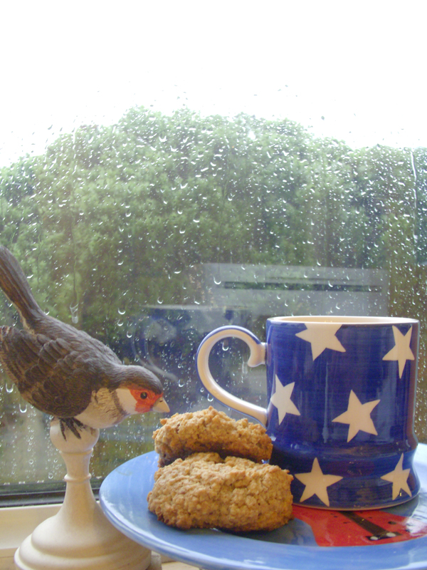 Rainy-day-biccies
