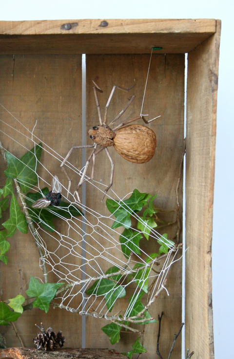 Spider-House-web