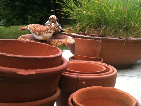 Birds-and-pots