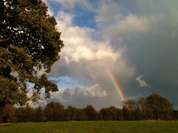 Wild skies & rainbows