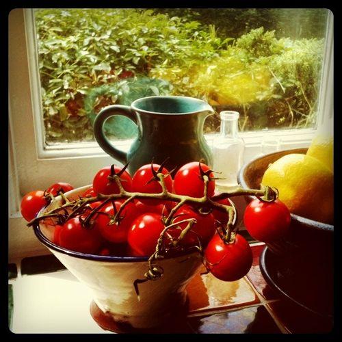 Insta tomatoes