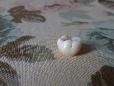 The last tooth