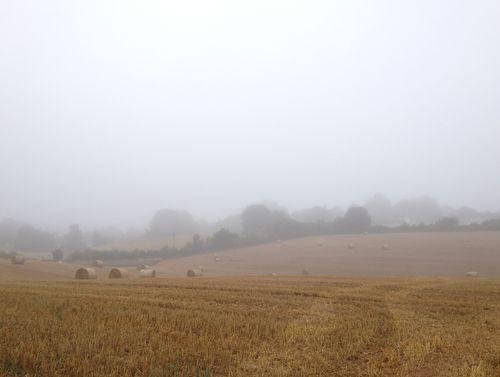 One misty morning